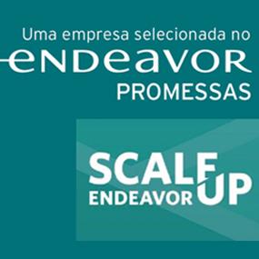 Endeavor e Scale Up